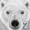 终极北极熊模拟器2无限经验无限血量