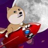 柴犬到月球去