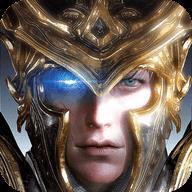 黑金圣骑士